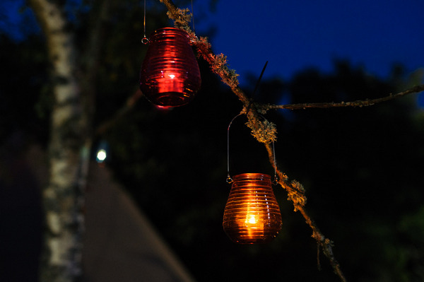 Glass lanterns in tree