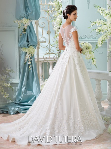 Picture of Back of 116213 - Lene Wedding Dress - David Tutera for Mon Cheri Spring 2016 Bridal Collection