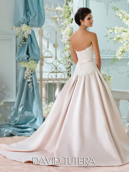 Picture of Back of 116215 - Lucienne Wedding Dress - David Tutera for Mon Cheri Spring 2016 Bridal Collection