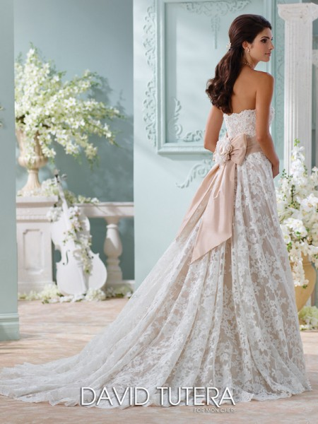 Picture of Back of 116219 - Yalene Wedding Dress - David Tutera for Mon Cheri Spring 2016 Bridal Collection