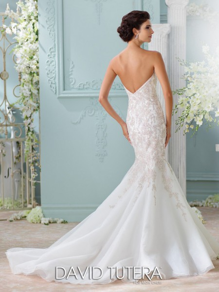 Picture of Back of 116227 - Apollonia Wedding Dress - David Tutera for Mon Cheri Spring 2016 Bridal Collection