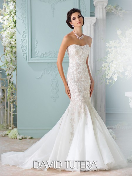 Picture of 116227 - Apollonia Wedding Dress - David Tutera for Mon Cheri Spring 2016 Bridal Collection