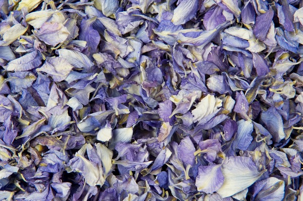 Frosted Blue Confetti from Shropshire Petals