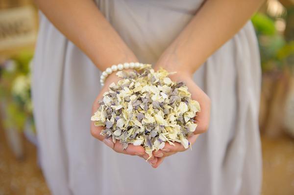 Winters Morn Confetti from Shropshire Petals