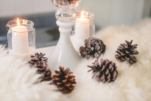Pine cones on whit fur cloth