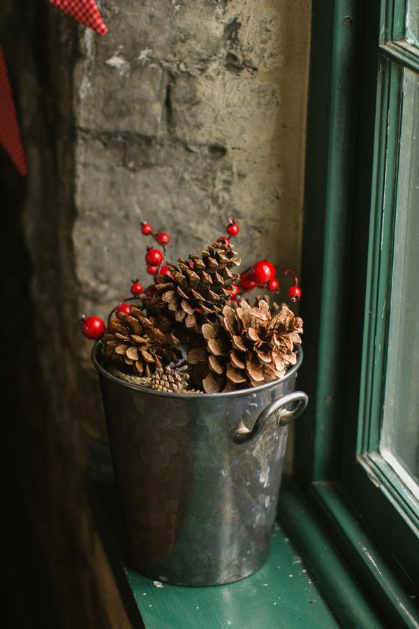 Bucket of pine cones