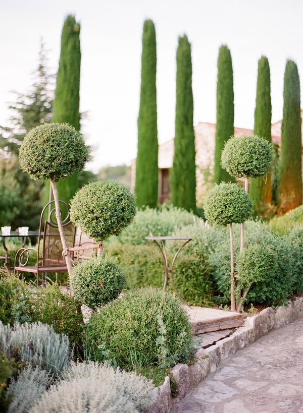 Hedges in garden of Domaine De Capelongue