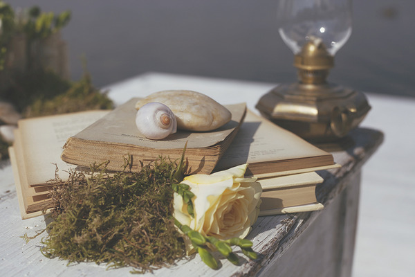 Books, shells and flower