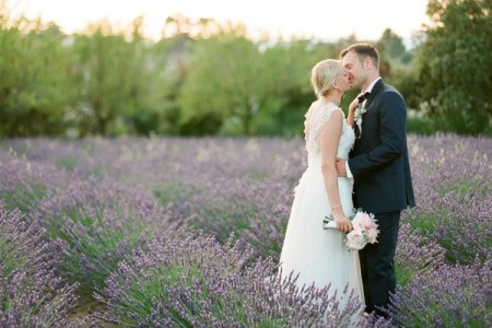 Bride and groom kissign in a field of lavender in Provence
