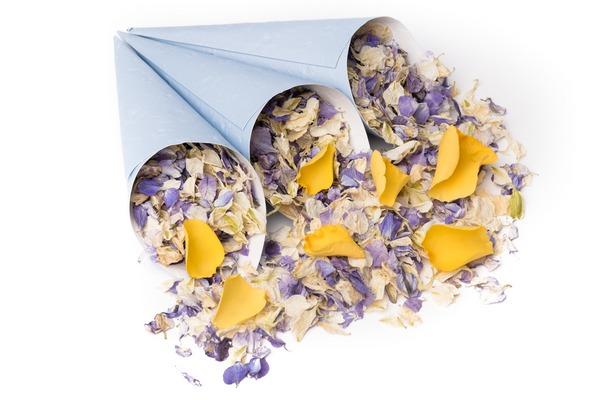 Blue Confetti Cones from Shropshire Petals