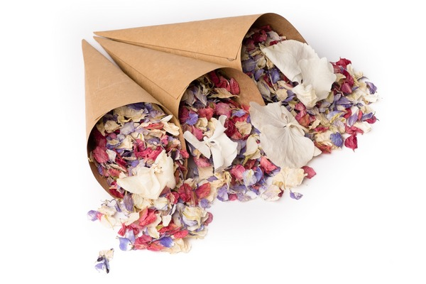 Brown Craft Confetti Cones from Shropshire Petals