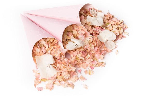 Pink Confetti Cones from Shropshire Petals