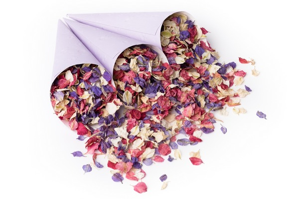 Purple Confetti Cones from Shropshire Petals