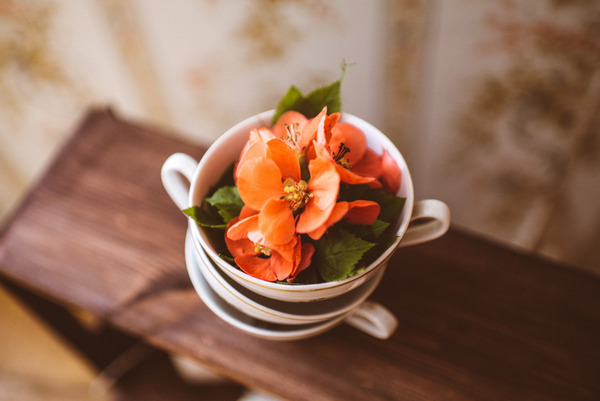 Flowers in vintage cups