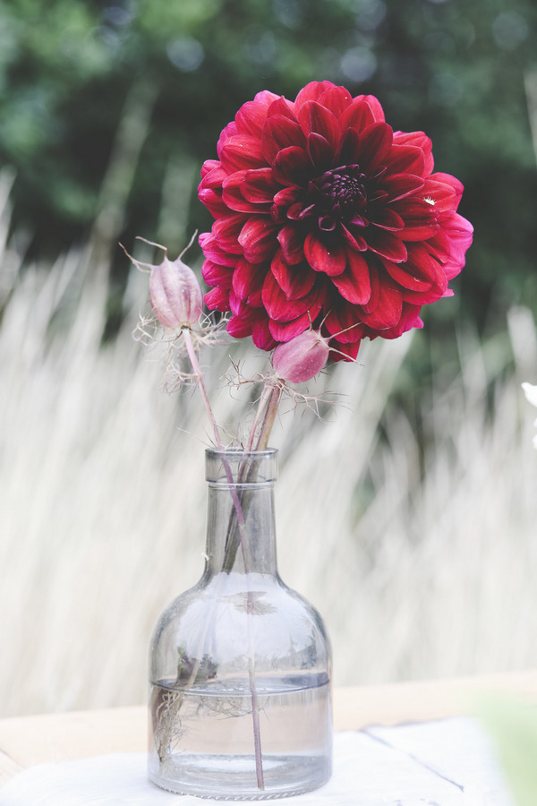 Red flower in bottle