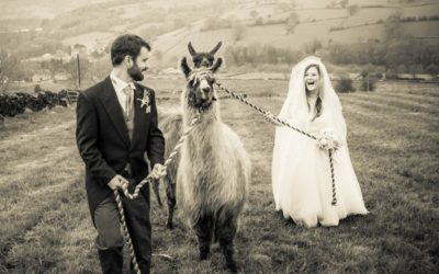 Picture of the Day – PH Weddings