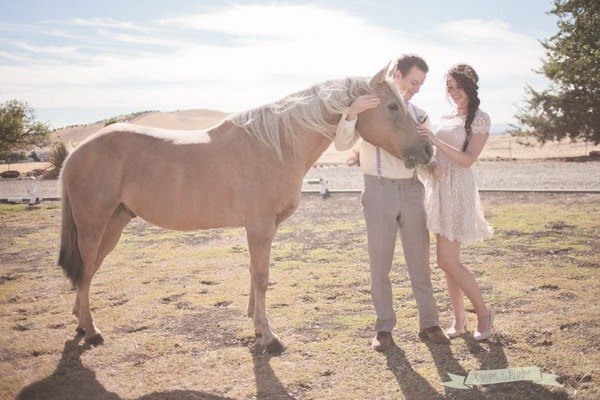 Bride and groom stroking a horse - Picture by Paige and Blake Green Photography