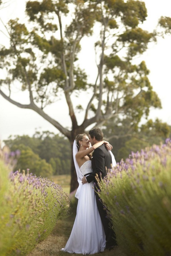 Bride and groom kissing in front of tree in lavender field