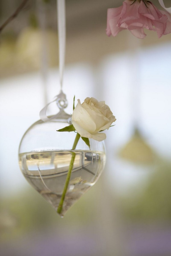 Rose in small vase hanging from ceiling