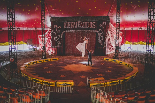 Bride and groom trapeze act in circus