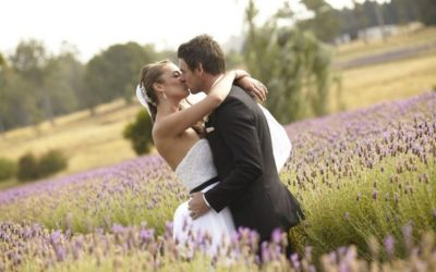A Neutral, Natural and Vintage Wedding with Lavender Backdrop