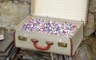 Five Fun Ways to Display Confetti