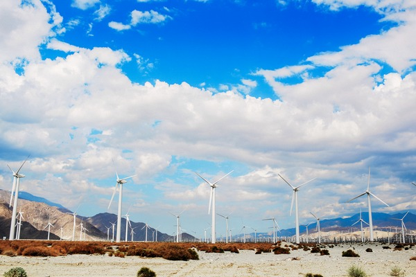 Windfarm in Palm Springs, California