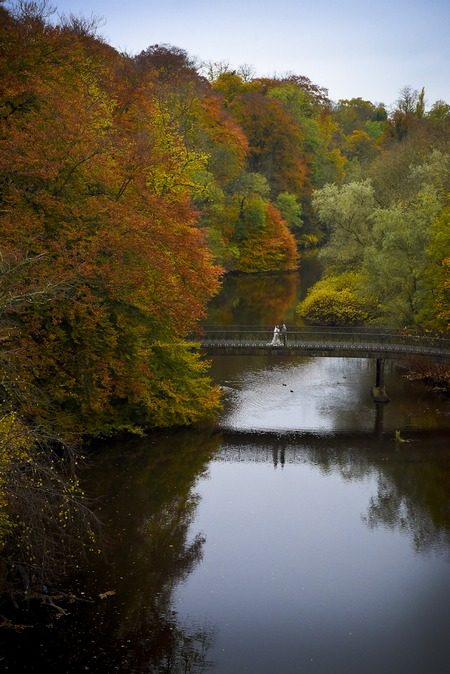 Bride and groom on bridge over river surrounded by trees - Picture by KGT Photos