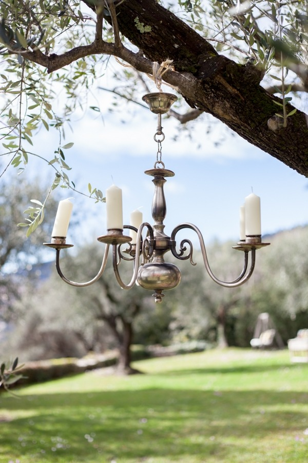 Chandelier hanging from tree