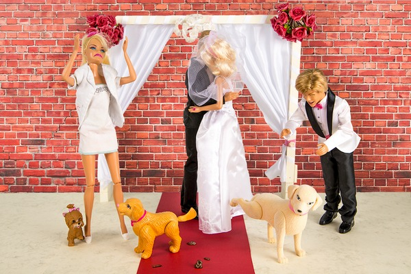 Dogs at weddings - Bizarre Wedding Requests