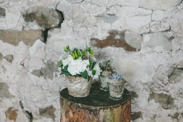 Pots of flowers and succulents on tree stump