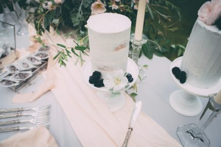 Which wedding cake with blackberries