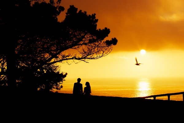 Silhouette of couple next to a tree with sun and sea in background - Picture by Robles Visuals
