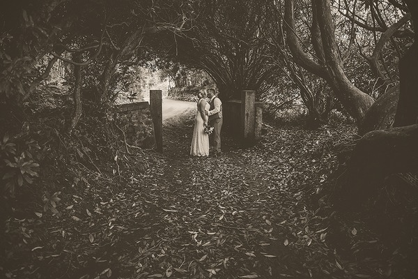 Bride and groom kissing by gate posts under trees - Picture by Tracey Warbey Photography