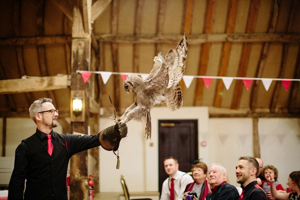 Owl delivering rings at wedding - Picture by Nisha Haq Photography