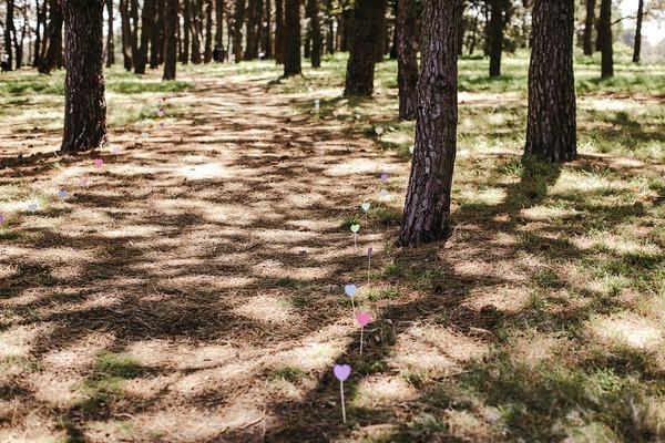 Row of hearts across grass
