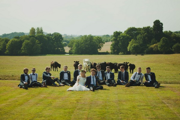 Bride and groomsmen sitting in field with cows behind