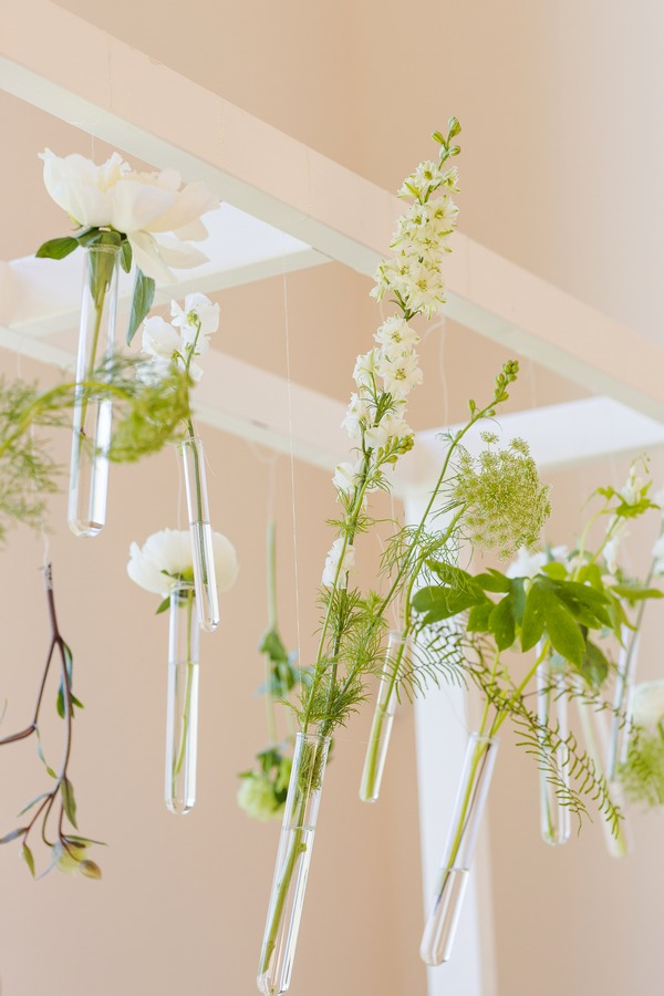 Flowers hanging in test tubes