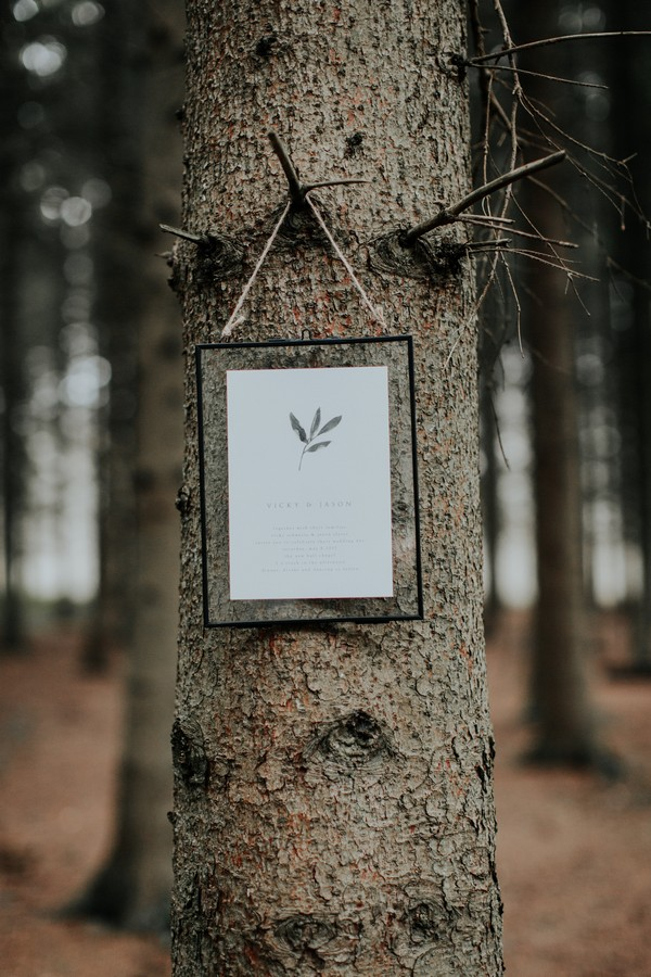 Frame hanging from tree in woods