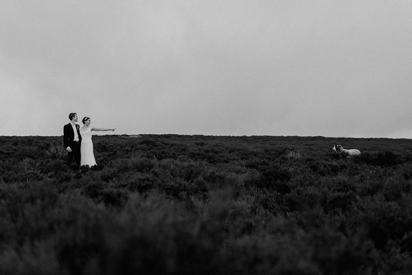 Bride and groom in field pointing at sheep - Picture by Chris Scuffins Photography