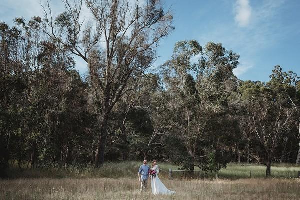 Bride and groom in field of alpaca farm