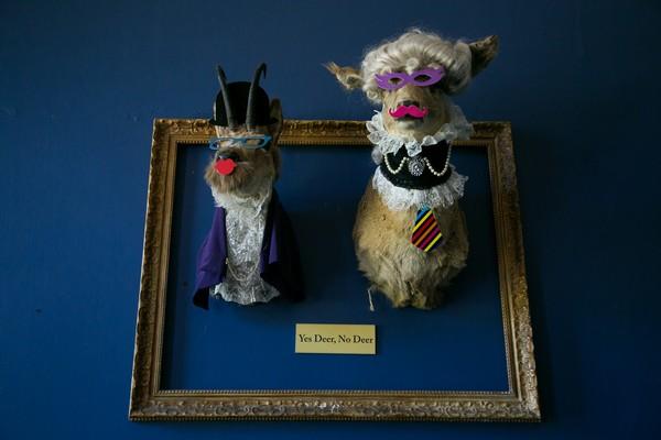 Yes Deer, No Deer - Deer heads with props on wall at Kings Weston House
