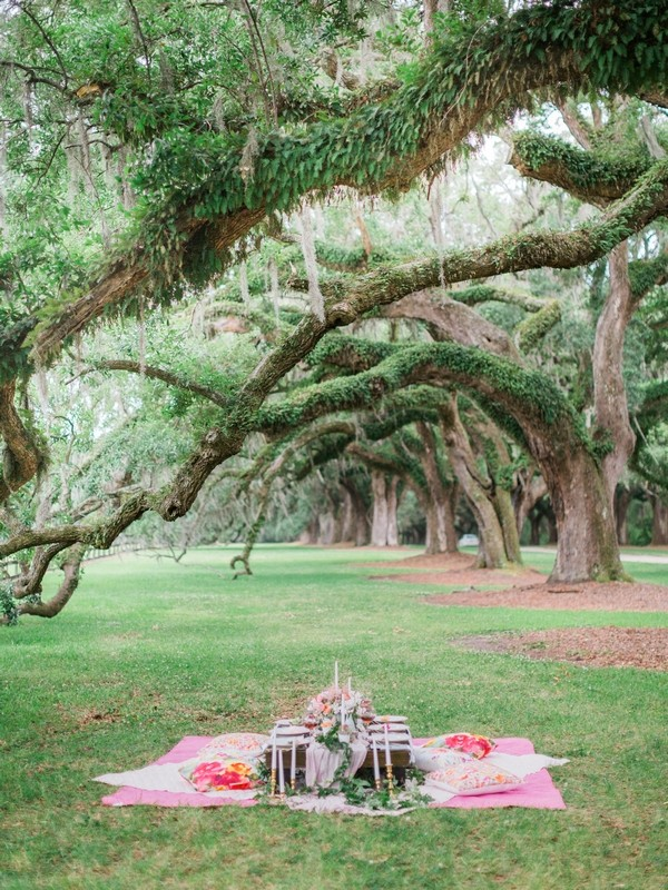 Picnic blanket and table under oak tree