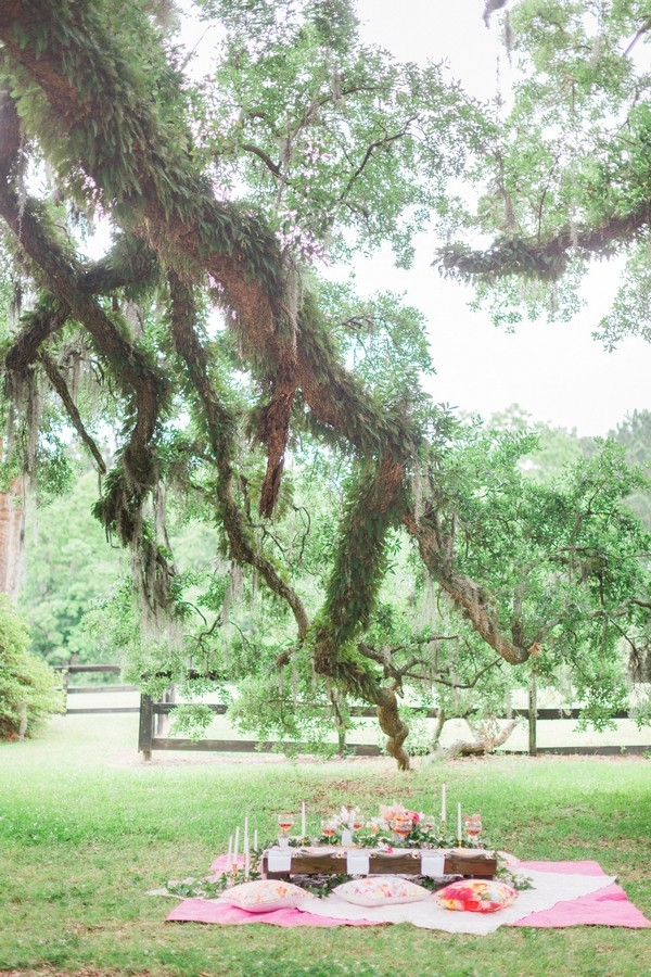Branch of oak tree over picnic setting