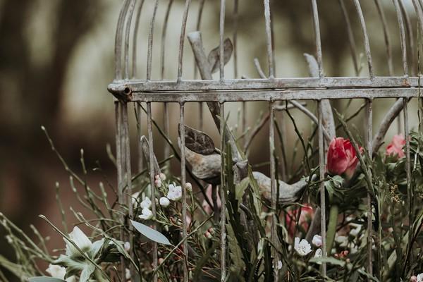 Bird figures in cage