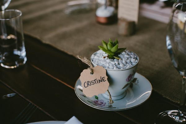 Teacup with succulent in it