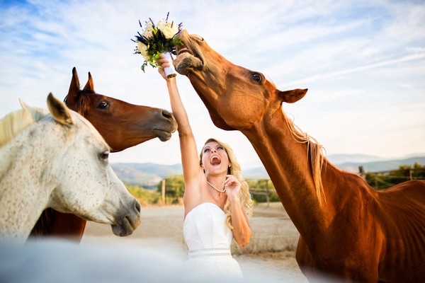 Horse eating bride's bouquet - Picture by Fabio Mirulla Photographer