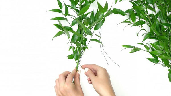 Wrapping foliage around small hoop