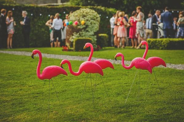Pink flamingo decorations at Colehayes Park wedding