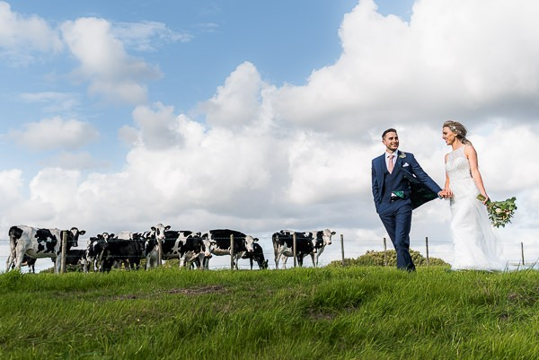 Bride and groom in field with cows